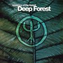 Essence Of The Forest thumbnail