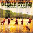 What's The Rumpus? thumbnail