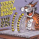 The Dream Band, Vol. 5: Big Cat thumbnail