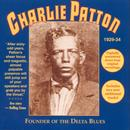 Founder Of The Delta Blues thumbnail