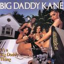 It's A Big Daddy Thing thumbnail
